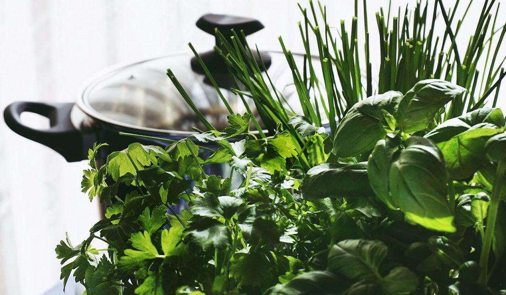 herbes aromatiques à planter sur le balcon